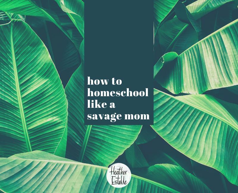 How to homeschool like a Savage Mom